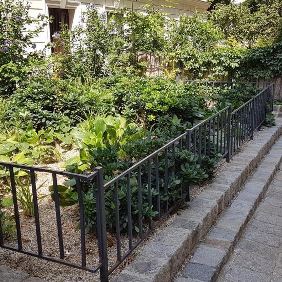 Landscape: Urban and Garden in habitat Flowerbed in the NatureSpots App
